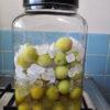 梅サワーシロップを作ってみた。
